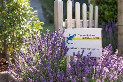 Gartentor und Lavendel