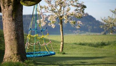 Kinderschaukel an Baum