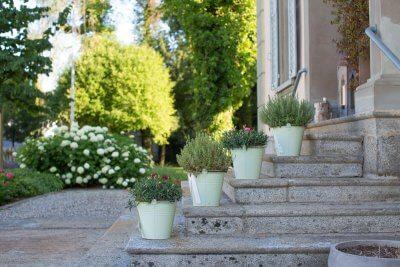 dekorative Blumentöpfe auf Treppe