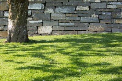Trockenmauer an Rasenfläche